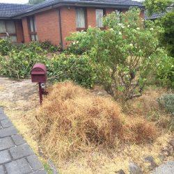 Fox mowing gardening and irrigation jason bishop