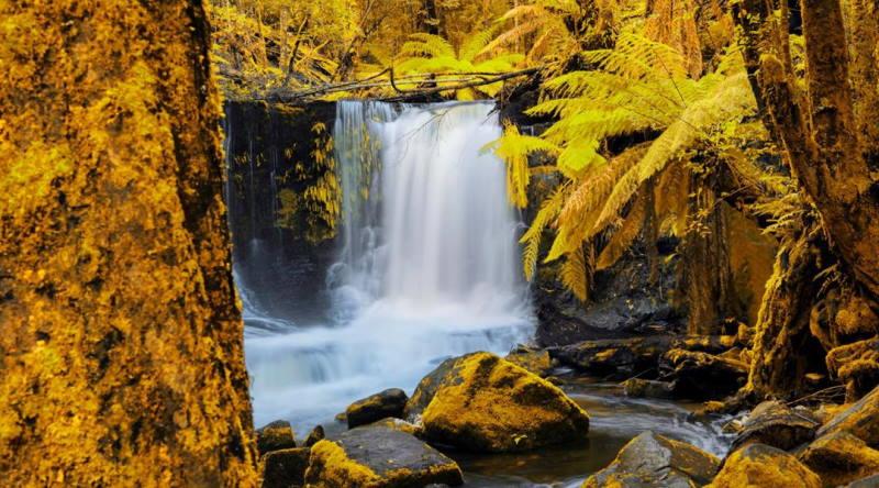 Horseshoe Falls, Mt Field National Park, Tasmania