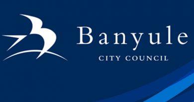 banyule community grants
